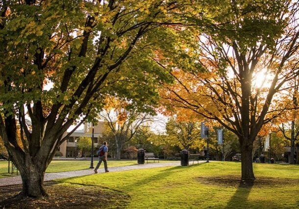 A male student walks across Circle Park under the fall colors on November 7, 2018. Photo by Steven Bridges